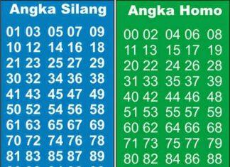 Cara Pasang Live Draw Sbobet Indonesia